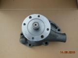 Kühlmittelpumpe / Wasserpumpe Hanomag D131-D162